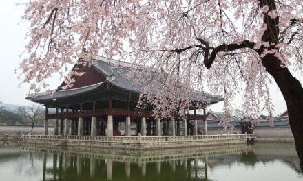 La Corée à l'honneur au Muséum d'histoire naturelle