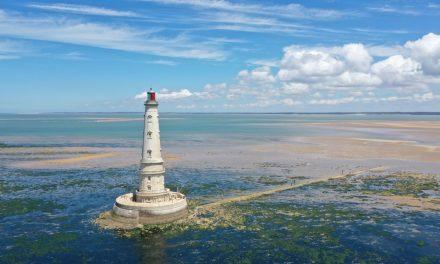 Le Parc de l'estuaire a (re)découvrir de septembre à novembre