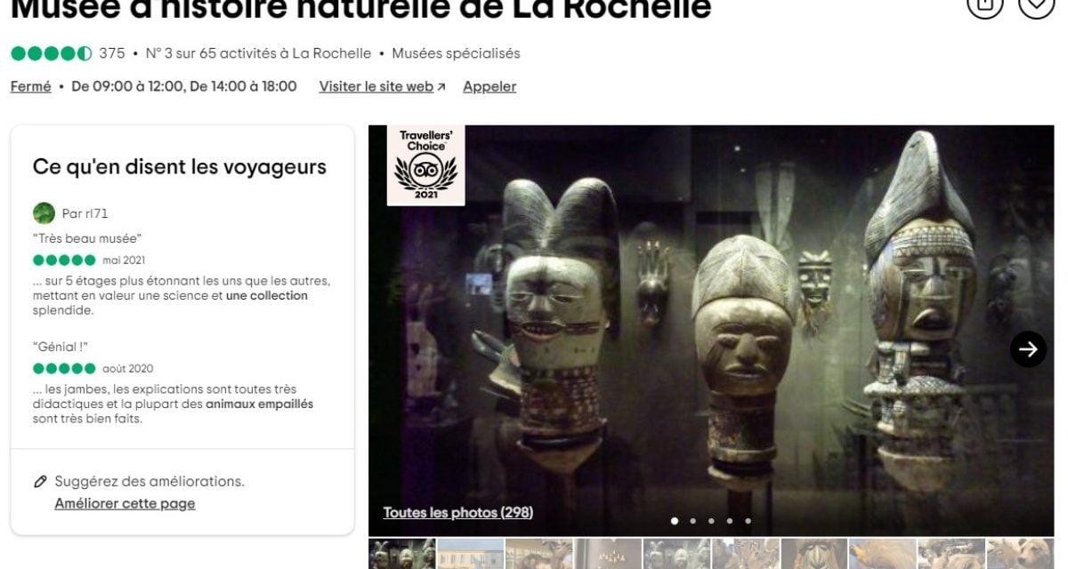 Le Muséum d'Histoire naturelle de La Rochelle reçoit le prix Tripadvisor Travellers' Choice 2021