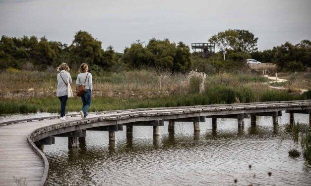 [Photos ] Le Marais de Tasdon retrouve ses promeneurs